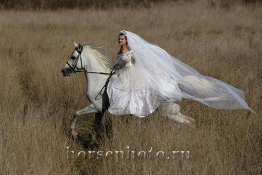 В Воронеже выберут самую красивую невесту - Новости.